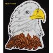 écussons Motorcycle Tête d'aigle