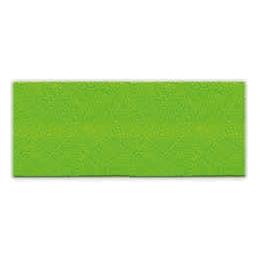 Biais unis Large Vert 56
